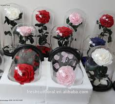 long lasting roses in glass long lasting roses in glass suppliers