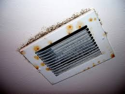 How To Prevent Black Mold In Bathroom How To Remove Black Mold In Air Ducts And Vents