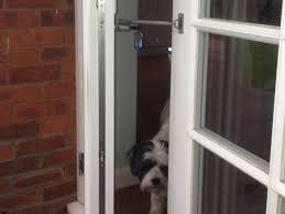 Cat Flap Patio Door Cat Flap Or Door Alternative Locklatch