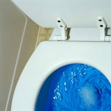 How Do You Spell Bidet Toilet How To Fix A Toilet That U0027s Overflowing Home Guides Sf Gate