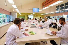 Human Anatomy And Physiology Courses Online Facilities Lismore Campus Of Health U0026 Human Sciences Scu