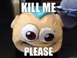 Please Kill Me Meme - people and things that are clearly screaming please kill me fun
