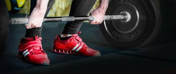 free weights workout equipment u0026 fitness supplies cap barbell
