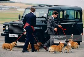 in focus queen elizabeth ii and her corgis photos and images