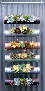 Rock Garden Planters by 70 Indoor And Outdoor Succulent Garden Ideas Shelterness