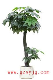 artificial coffee tree artificial coffee tree suppliers and