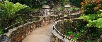 explore gardens balboa park zoro garden