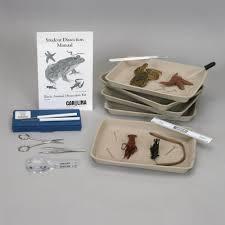 basic animal dissection kit carolina com