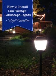 Installing Low Voltage Landscape Lighting How To Install Landscape Lights And Repel Mosquitoes Pretty