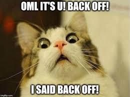 Back Off Meme - scared cat meme imgflip