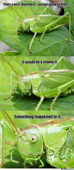 Crickets Meme - damn crickets by dgk dr fresh meme center