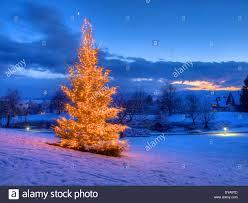 switzerland europe canton zurich evening lights snow mood