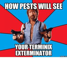 Exterminator Meme - how pests will see your terminix exterminator memes com