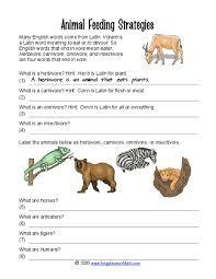 animal feeding strategies 4th 5th grade worksheet lesson planet