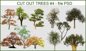 sketchup texture cut out trees 4 psd file