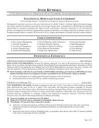 Senior Executive Resume Samples by Executive Resume Templates Haadyaooverbayresort Com