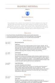 Olive Garden Server Job Description Resume by Bartender Server Resume Samples Visualcv Resume Samples Database