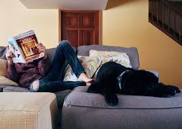 How To Get A Comfort Dog How Much Is Your New Pet Really Going To Cost You Swoosh Finance