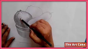 fruit bowl pencil sketch how to draw fruit bowl still life in