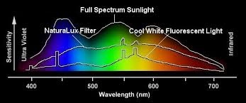 fluorescent light natural sunlight comparison1 jpg