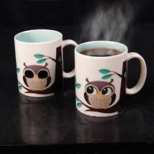 owl mug rise and shine magic owl mug diggitygifts