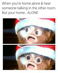 Home Alone Meme - when you re home alone memes
