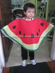 35 best fruit costumes images on pinterest fruit costumes