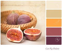 Colour Style by A Basket Of Cut And Whole Figs Vintage Style In A Colour Palette