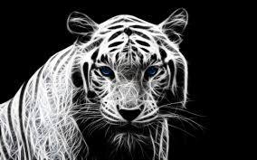 tiger mobile hd wallpapers 6681 amazing wallpaperz
