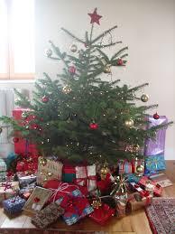 christmas tree choice guide