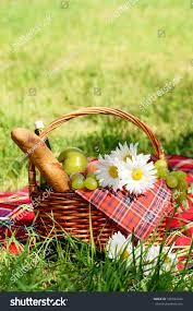 Wine Picnic Baskets Picnic Basket Red Napkin Fool Fruits Stock Photo 106584242