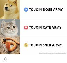 Cate Meme - to join doge army o to join cate army to join snek army
