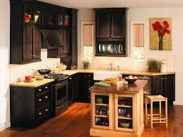 Black Painted Kitchen Cabinets by Cabinet Cabinets In Kitchen Espresso Kitchen Cabinets Pictures