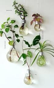 grow light bulbs lowes plant lightbulbs grow your own garden cfl grow light bulbs lowes