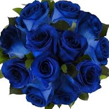 blue roses delivery blue roses bouquet flowers delivery 4 u southall middlesex