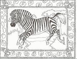 zebra print coloring