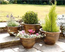 large outdoor planters for trees modern large outdoor planters
