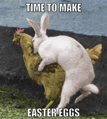 Funny Easter Memes - easter funny bunny images pictures happy easter 2017 funny memes