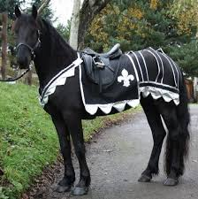 Patterns Halloween Costumes 25 Horse Costumes Ideas Horse Halloween