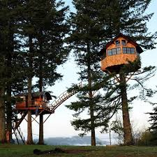 three house builds amazing treehouse home with its own skatepark treehugger
