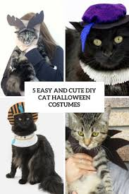 5 easy and cute diy cat halloween costumes styleoholic