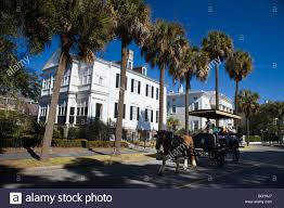 Large Mansions Horse Pulls A Carriage Tour Group In Front Of Palmetto Trees