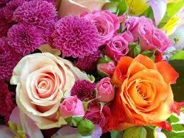 Amazing Flower Arrangements - 300 best flowers images on pinterest flowers beautiful flowers