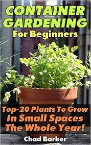 Raised Gardens For Beginners - container gardening for beginners top 20 plants to grow in small