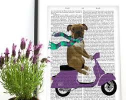 boxer dog wall art boxer on scooter etsy