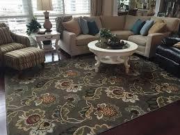 home decorators area rugs home decorators collection calypso cocoa praline 10 ft x 13 ft