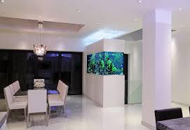 freshwater room divider aquarium aquarium architecture