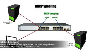dhcp snooping best cisco ccna ccnp and linux centos pdf notes