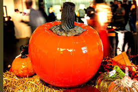 Best Pumpkin Patch Snohomish County by Halloween Season Begins With Glass Pumpkin Fest At The Schack