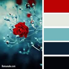 best 25 red color combinations ideas on pinterest winter colour